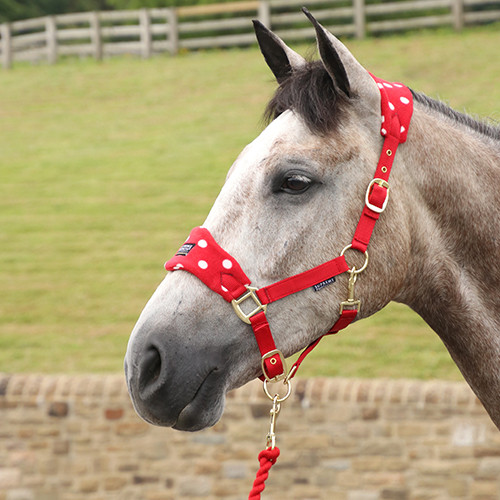 Supreme Products Dotty Fleece Head Collar & Lead Rope - Rosette Red - Small Pony
